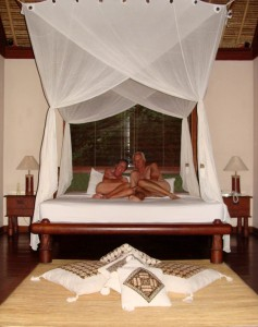 Clean Sheets, Mosquito Net